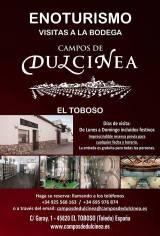 Bodegas Campos de Dulcinea